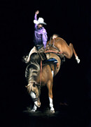 Rodeo Pastels Posters - The Bronc Poster by Karen Elkan