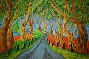 Tree Plantation Drawings - The Dark Hedges by Paul Morgan