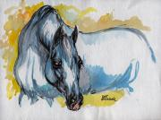White Horses Drawings Prints - The Grey Arabian Horse Print by Angel  Tarantella