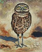 Burrowing Owl Framed Prints - The Guardian Framed Print by Eve  Wheeler