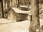 New England Winter Metal Prints - The Old Sugar Shack Metal Print by Edward Fielding