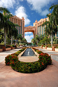 Resort Framed Prints - The Royal Towers Atlantis Resort Framed Print by Amy Cicconi