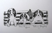 Puppies Drawings Framed Prints - Three Puppies Framed Print by Patricia Januszkiewicz