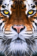 Scary Digital Art Originals - Tiger Eye by John Robichaud
