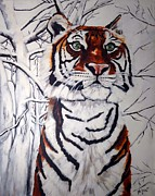 The Tiger Paintings - Tiger in the Snow by Jill Sluka