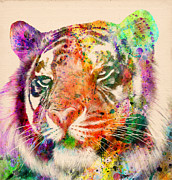 The Tiger Digital Art Metal Prints - Tiger Portrait  Metal Print by Mark Ashkenazi