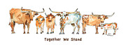 Longhorns Prints - Together We Stand  Print by Kathleen McElwaine