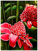 Torch Paintings - Torch Ginger by John Shipp