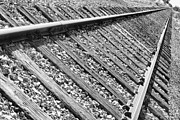 Railroad Ties Prints - Train Tracks Triangular in Black and White Print by James Bo Insogna