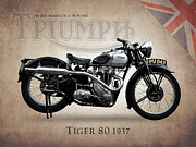 Bsa Prints - Triumph Tiger 80 Print by Mark Rogan