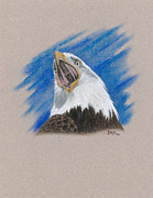 Eagle Drawing Drawings Originals - Triumphant by Dino Baiza