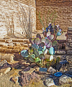 Tucson Arizona Cactus Print by Gregory Dyer