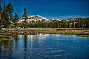 Yosemite Framed Prints - Tuolumne Meadows Framed Print by Cat Connor