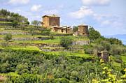 Tuscany - Montalcino Print by Joana Kruse