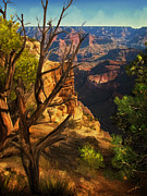 Grand Canyon Digital Art - View from South Rim by Dale Jackson