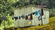 Shed Photo Prints - Wash Day Print by Kathy Jennings