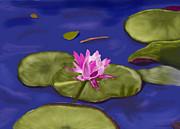 Kay Lovingood - Water Lily