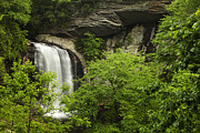 North Carolina Photo Posters - Waterfall in the Woods Poster by Andrew Soundarajan