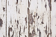 Stripe.paint Prints - Weathered Paint on Wood Print by Tim Hester