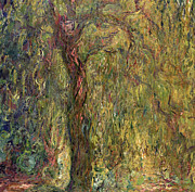 Inv Posters - Weeping Willow Poster by Claude Monet