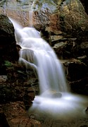 Wildcat Falls Print by Bill Gallagher