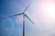 Wind Turbine Print by Amy Cicconi