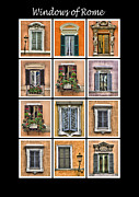 Weathered Shutters Framed Prints - Windows of Rome Framed Print by David Letts