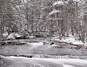 Snowy Stream Prints - Winter Stream Print by Nick Zelinsky