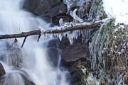 Winter Waterfall Print by David Birchall
