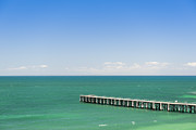 Jetty View Park Prints - Wooden Jetty Print by Tim Hester