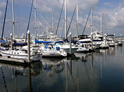 Docked Sailboats Posters - Yachts in Harbor Poster by Anthony Dezenzio
