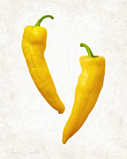Ingredient Painting Framed Prints - Yellow Hot Peppers  Framed Print by Danny Smythe