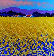 Landscape Framed Prints Prints - Yellow Meadow Print by John  Nolan