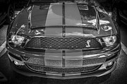 Racer Framed Prints - 2007 Ford Shelby GT 500 Mustang BW Framed Print by Rich Franco