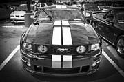 Racer Framed Prints - 2008 Ford Shelby Mustang Roush Stage 2 BW Framed Print by Rich Franco