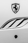 2010 Photo Posters - 2010 Ferrari California Side Emblem Poster by Jill Reger