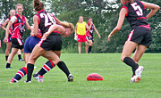 Magpies Photos - 2012 49th Parallel Cup USA Freedom v Canada Northern Lights by Leo Strawn Jr