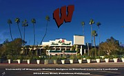 University Of Wisconsin Framed Prints - 2013 Rose Bowl Pasadena CA Framed Print by Tommy Anderson