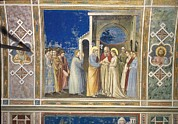 Fresco Framed Prints - Italy, Veneto, Padua, Scrovegni Chapel Framed Print by Everett