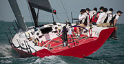 Habor Prints - Key West Race Week Print by Steven Lapkin
