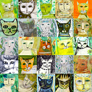 Portraits Of Cats Framed Prints - 25 Cats Framed Print by Sarah Kiser