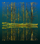 Cut Trees Posters - 2614 Poster by Peter Holme III
