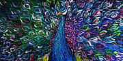 Print On Canvas Framed Prints - Peacock Framed Print by Willson Lau