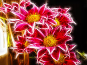 Elvira Ladocki Metal Prints - 2748-glowing Flowers Metal Print by Elvira Ladocki