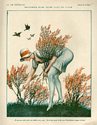 Floral Drawings - 1920s France La Vie Parisienne Magazine by The Advertising Archives