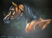 Equine Art Pastels - Arabian Horse  by Angel  Tarantella