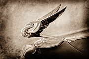 Collector Hood Ornament Prints - 1935 Chevrolet Hood Ornament Print by Jill Reger