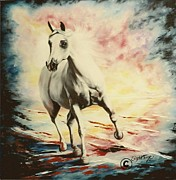 Horse Pastels Paintings - 202 Supreme the Arabian by Sigrid Tune