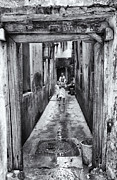 Small Towns Originals - 3 African Kids Stone Town Corridor by Amyn Nasser