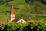 Grand Cru Prints - Alsace Church Print by Brian Jannsen